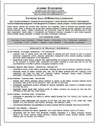 s4a-resume-marketing.jpg Software Sales Executive Resume Example