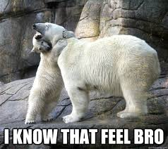 Hugging Polar Bears memes | quickmeme via Relatably.com