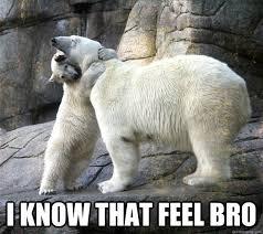 Hugging Polar Bears memes | quickmeme via Relatably.com