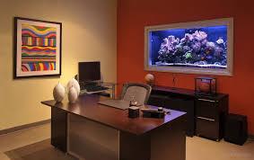 living reef aquarium in office aquarium office