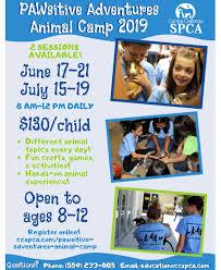 Pawsitive Adventures <b>Animal</b> Camp | Central California SPCA ...