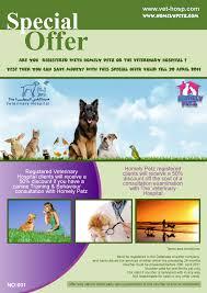 homely petz dubai abu dhabi pet services dubai for pet sitting comments