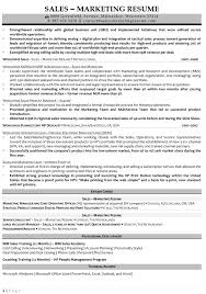 resume samples for s and marketing jobs s