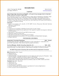 doc professional summary examples template 5 career summary resume