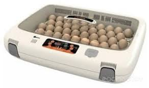 Купить <b>инкубатор</b> для яиц в Минске, цены в интернет-магазинах ...