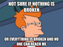 Not sure if nothing is broken Or everything is broken and no one ... via Relatably.com