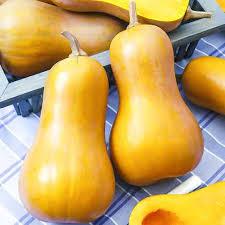 <b>Тыква</b> порционная <b>Ореховое масло</b> (74039): купить <b>семена</b> ...