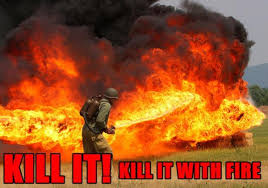 Image - 128622] | Kill It With Fire | Know Your Meme via Relatably.com