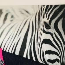 Картина Зебра <b>ИКЕА</b> – купить в Томилино, цена 2 500 руб., дата ...