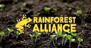 <b>Rainforest</b> Alliance: Home