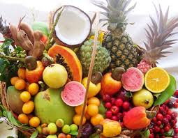 Resultado de imagem para imagem todas as frutas