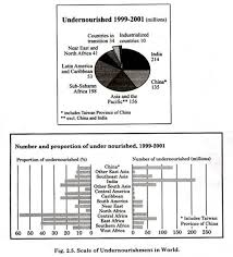 essay on world food crisis    diagrams and tables scale of undernourishment in world