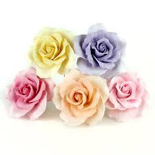 Assorted Size Garden <b>Roses</b> - <b>Mix</b> — CaljavaOnline