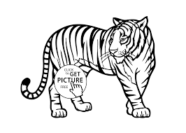 Small Picture Download Coloring Pages Jungle Animals Coloring Pages Jungle