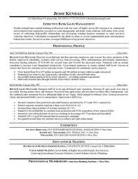 Sales Executive Cover Letter Sample Resume Cover Letter in