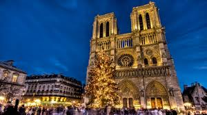 Image result for christmas trees in france