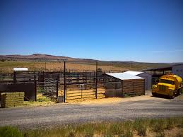 straight from the horse s heart home of blm sterilization experiment lab at hines or holding facility photo by r t