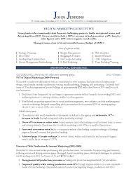 digital marketing specialist resume digital marketing resume digital marketing specialist resume