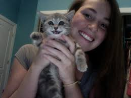 Cute Kitten Smiling On Webcam - cat-smiling-on-webcam
