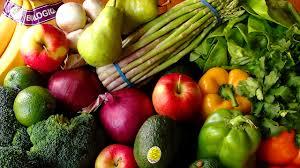 Image result for vegan
