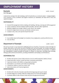 examples of resumes accounting auditor resume objective and examples of resumes job resume sample resume social worker social worker resume in sample