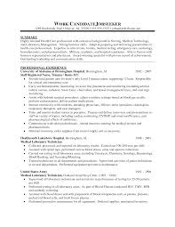 sample resume of professionals how to write a resume summary that grabs attention blue sky duupi how to write a resume summary that grabs attention blue sky duupi