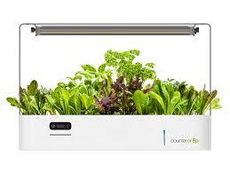 Kitchen Herb Garden Design Indoor Herb Garden Kit My Greens Light Garden Gardeners Supply
