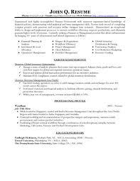 resume template  free professional resume templates resume    download sample professional resume template free   financial planning and analysis expertise