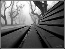 love images perspective and benches on pinterest awesome black white