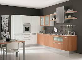 modern kitchen setup: image of popular modern kitchen cabinets wholesale