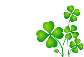 Image result for shamrock