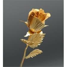 Лучшая цена на цветы для вазонов с доставкой