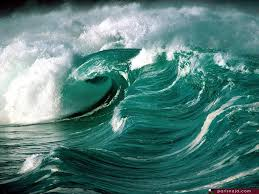 أكبر تجميع لأجمل صور من اعماق البحار (سبحان الله الخالق العظيم) Images?q=tbn:ANd9GcQD33j-Gx--cUmtp8SRc3EvAgfDHKZLYkGWEiPwzH96vuFhh5FiqA