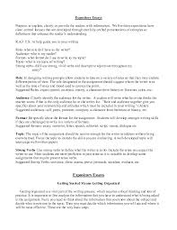 expository writing outline  expository essay outline template     photographyzto expository