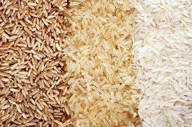 """Résultat de recherche d'images pour """"riz"""""""