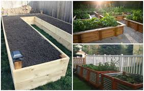 Small Picture Best Way To Build A Raised Bed Vegetable Garden Gardening Ideas