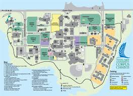 program nursing msn texas a m university corpus christi campus map