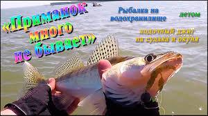 """""""<b>Приманок</b> много не бывает"""" - рыбалка на водохранилище ..."""