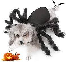 Spider Dog Costume, Pet Halloween Cosplay ... - Amazon.com