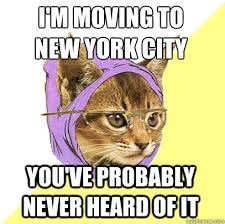 I'M Moving To New York City Cat Meme - Cat Planet | Cat Planet via Relatably.com