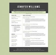 professional resume template pkg resume templates on creative bynthp1j professional resume formatting