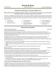 fashion account executive resume s account executive resume fashion account executive resume fashion account executive resume