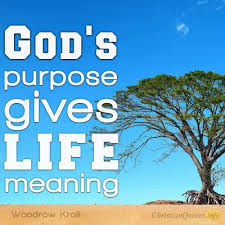Image result for God's purpose