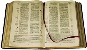 Resultado de imagem para biblias