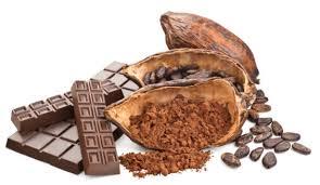 Resultado de imagen de cacao