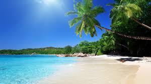 description of the beach essay org essays on muhammad ali