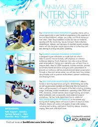 animal care internships at clearwater marine aquarium school of internship flyer h