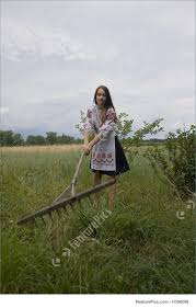 summer work on farm picture teenager girl working on green rural field wearing traditional ukrainian clothes