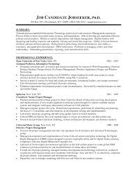 best cv format for accounts manager resume format examples best cv format for accounts manager finance manager cv template dayjob manager template retail manager cv