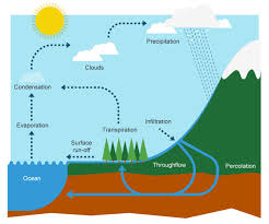 bbc bitesize   ks geography   the water cycle and river    diagram of the water cycle diagram of the water cycle